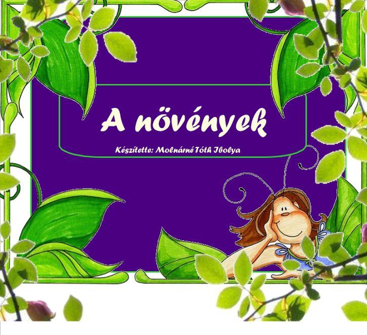30 új fotó · album tulajdonosa: Ibolya Molnárné Tóth