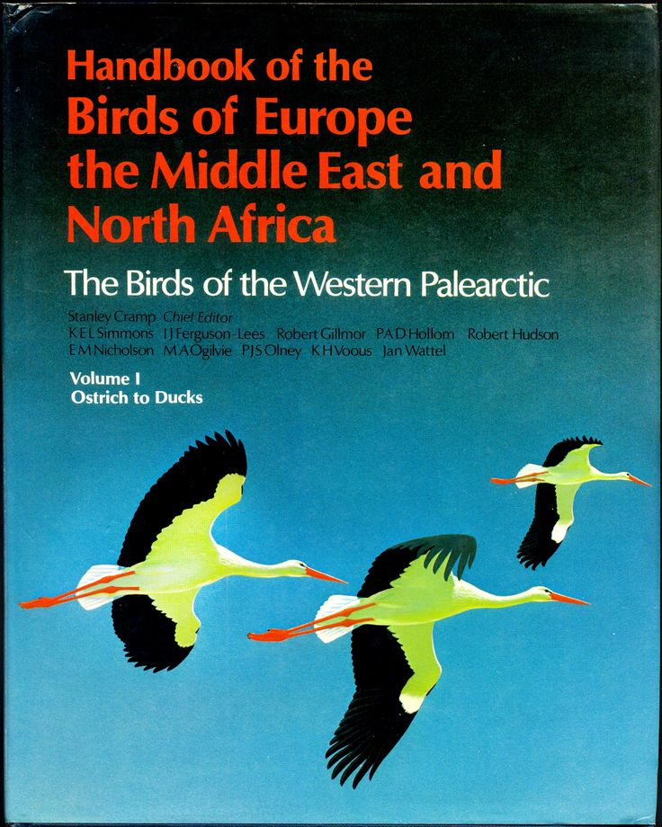 Volume 1 - Handbook of the Birds of the Western Palearctic - Ostrich to Ducks. 49,36€ Amazon - Ostrich to Ducks (Inglese) Copertina rigida – 12 gen 1978 di Stanley Cramp (Autore) #frillilibrary