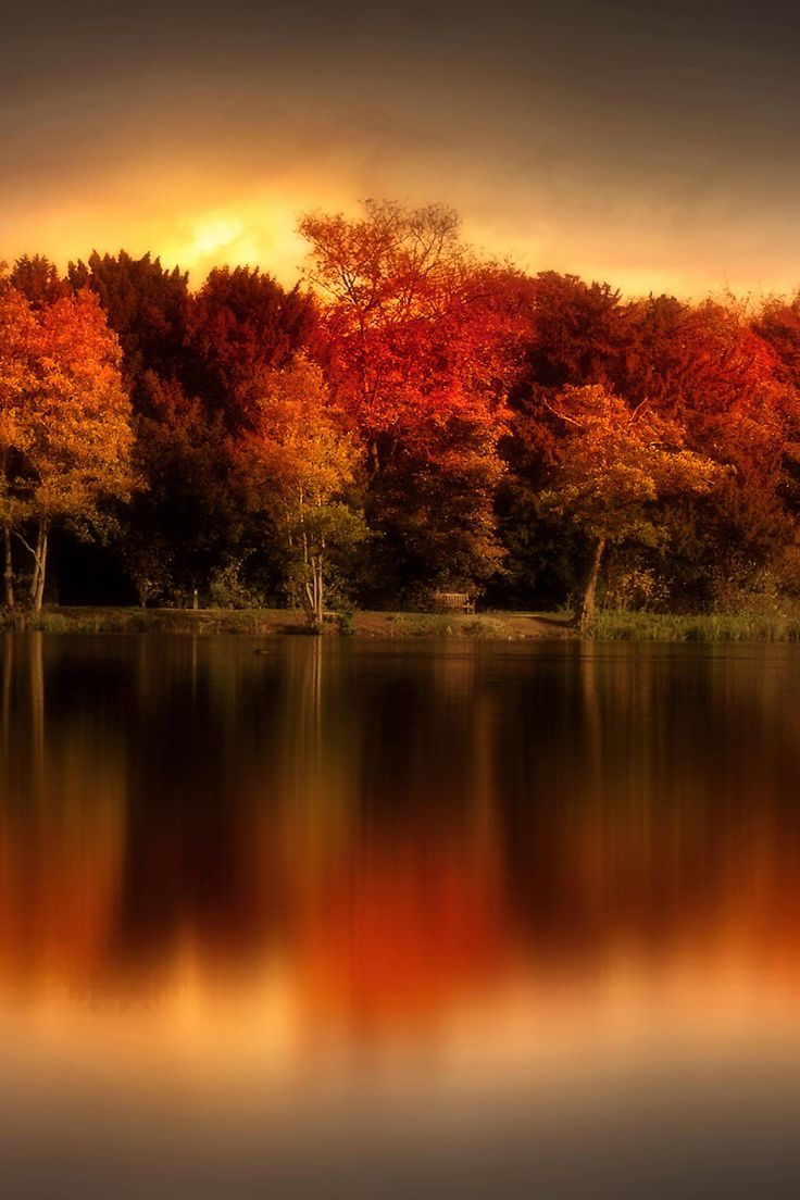 favorite-season: An Autumn Evening by Jenny Woodward #Photography #Beautiful #Landscape #Autumn #Fall