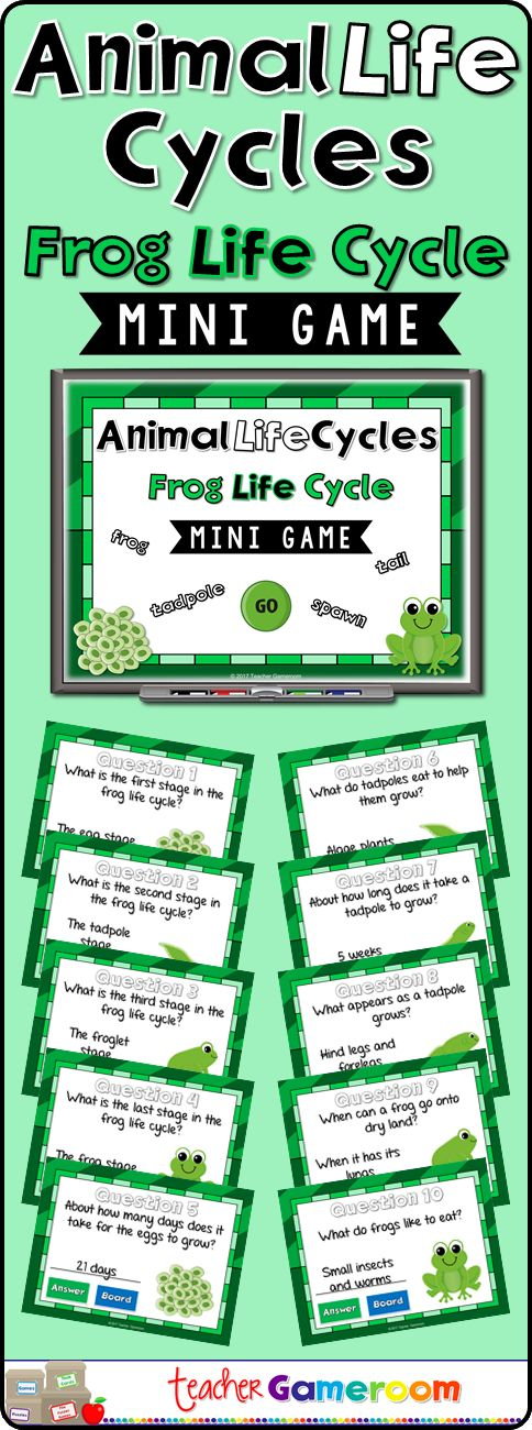 students answer questions about the frog life cycle. Questions include identifying stages and other basic information about frogs. #science #lifecycles #iteachtoo