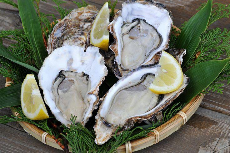 【広島県 カキ】広島県はカキの生産量第1位。旬を迎える2月を中心に、カキ関連のイベントが多数開催されます。また,広島県の「瀬戸内  海の道構想」の取組みのひとつとして,気軽に,手軽に牡蠣を食べることができる場所(通称:かき小屋)の提供を行っています。 http://www.pref.hiroshima.lg.jp/soshiki/234/oysterroad.html #Hiroshima_Japan #Setouchi