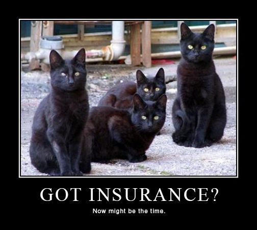 71 best images about insurance can be funny no really on