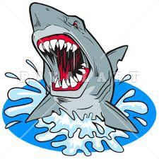 shark clipart - Google Search