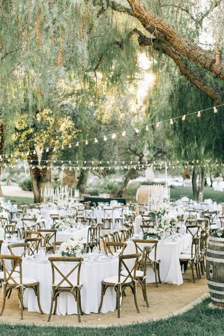 Country Vineyard Weddings Get Prices For Wedding Venues In Ca Forestwedding Receptionfairylights In 2020 Forest Wedding Reception Fairy Lights Wedding Forest Wedding