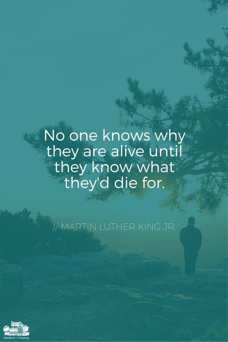 No one knows why they are alive until they know what the'd die for.  - Martin Luther King, Jr. #quote