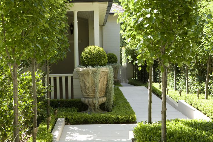 How to use a great big terra cotta pot or planter in an otherwise traditional landscape. Looks great, adds interest. peterfudgegardens.com