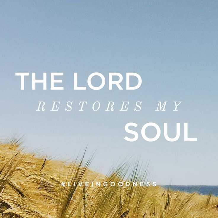 The Lord restores my soul. #LiveinGoodness