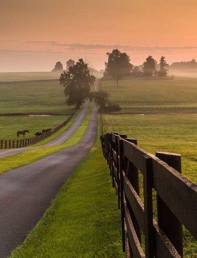 Road through Kentucky farmland by Rick Scalf
