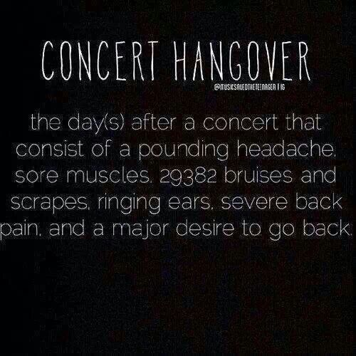 Haha yes experienced my first concert hangover during the summer..except i only had the pounding headache, the ringing ears, and the desire to go back :3                                                                                                                                                     More