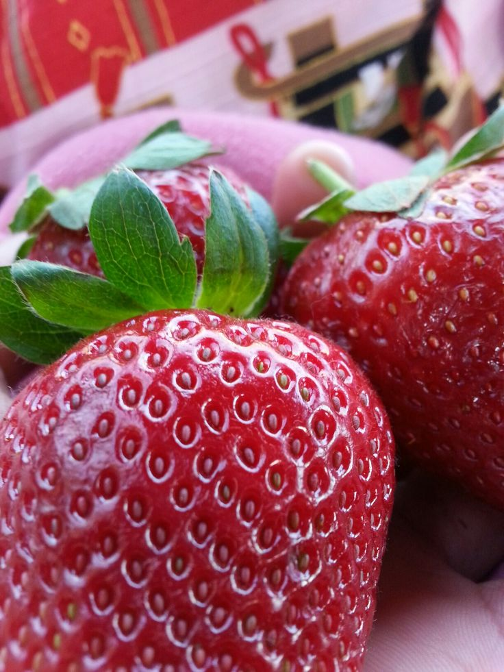Sweet Strawberries.