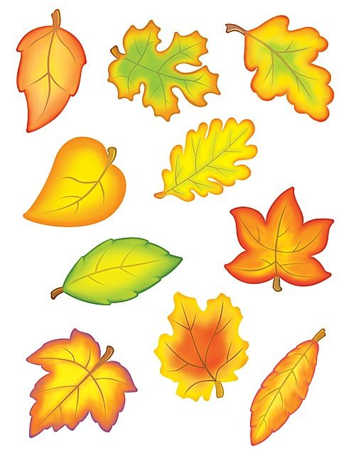 Fall Leaves Accents (TCR4419) available at Adventures In Learning