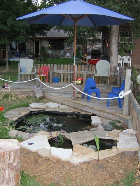 How to turn an old hot tub into a water feature in 8 steps for Turn pool into koi pond