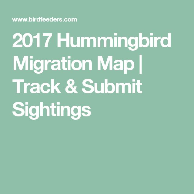 2017 Hummingbird Migration Map | Track & Submit Sightings