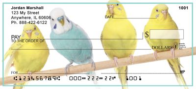 Budgerigars on Branches from Checks-SuperStore.com