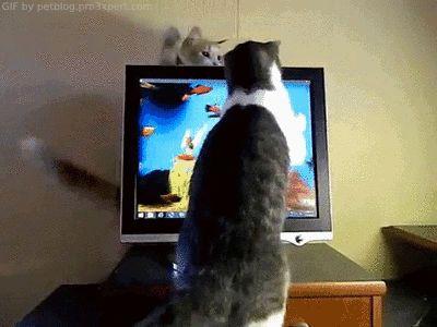 Cool Animált Retro És vicces számítógépes Gif - a legjobb animációk