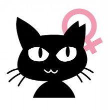 猫様たちの為に、広報活動頑張らなくちゃ!(TNR医療支援)|avetの活動日記~動物保護支援活動~