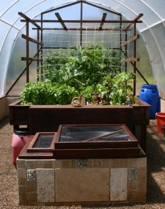 17 best images about apuaponics on pinterest raising for Self sustaining garden with fish