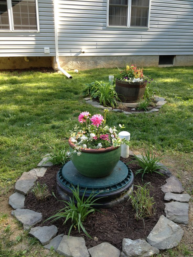 Landscaping Over A Septic Tank : Dressing up the septic covers gardening