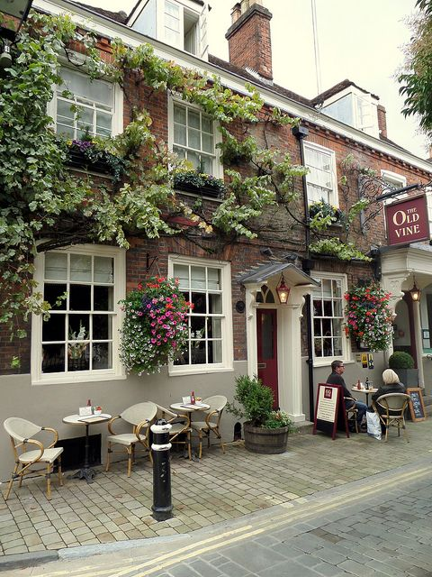 The Old Vine Winchester, England (by Trevor Goyette)