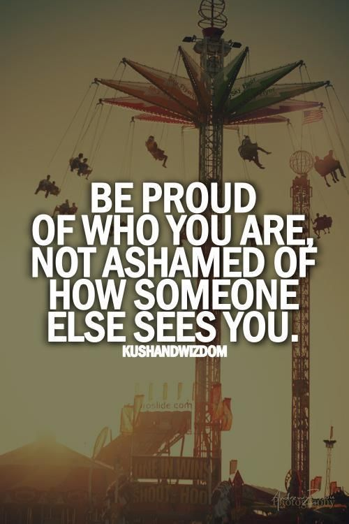 Be proud of who you are not ashamed of how someone else sees you, it's normally a reflective mirror they see only their own fault and evil