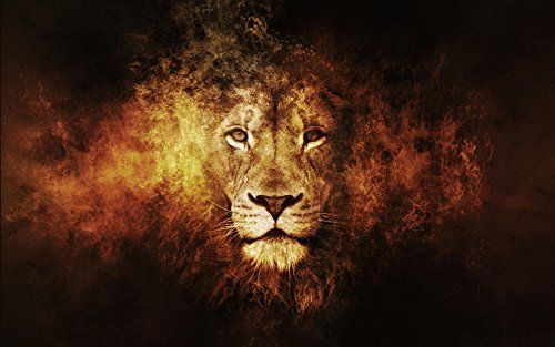 "Fire lion Fabric Cloth Rolled Wall Poster Print -- Size: (40"" x 24"" / 21"" x 13"")"