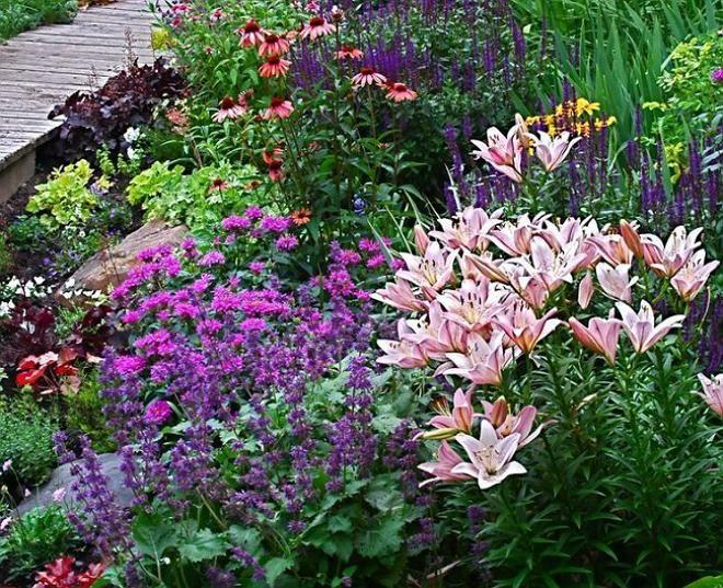Миксбордер из многолетников декоративен в любое время года. Именно поэтому такой цветник очень популярен в ландшафтном дизайне. Создать клумбу из множества различных и, казалось бы, совершенно несочетаемых видов и сортов декоративных растений — это целое искусство.