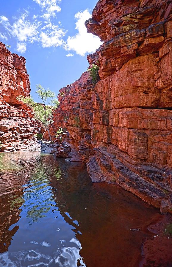 ✮ John Hayes Rockhole in the Northern Territory of Australia