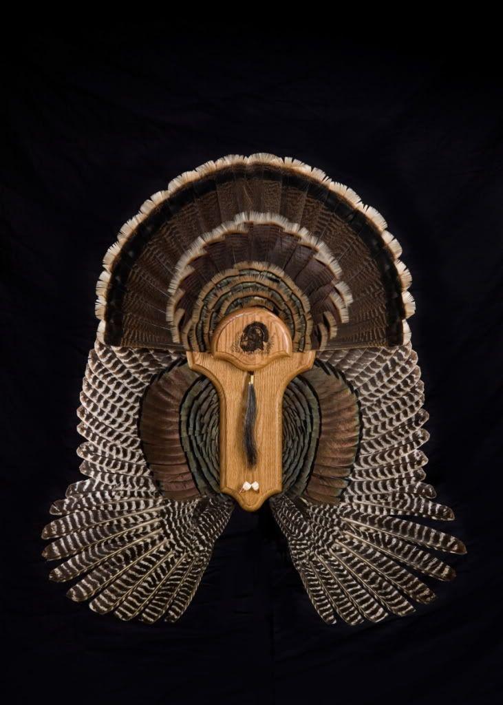 Turkey Fan/Wing Wall Mount Process...
