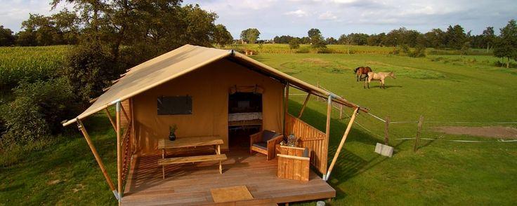 Camping de Stjelp, Friesland, Nederland