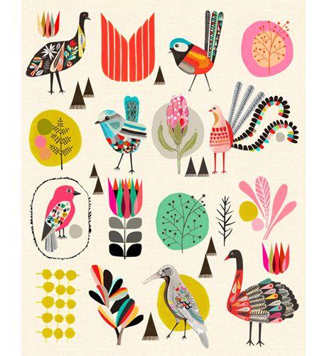 68 best diseo grfico images on pinterest poster flyer design the birds of australia print fandeluxe Gallery