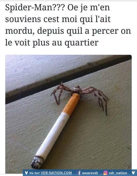 N'empêche que l'araignée peut garder la cigarette, je n'irai pas la lui reprendre…