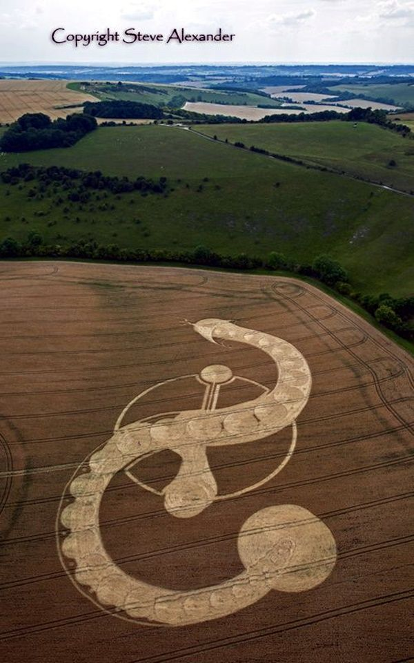 40 Another World Crop Circle Arts Drawn By Humans