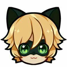 Cat noair