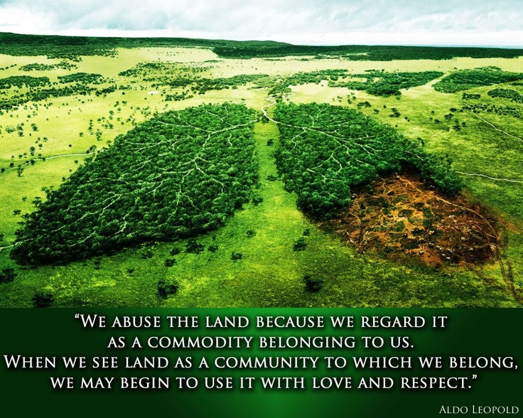 We abuse the land because we regard it as commodity belonging to us. When we see land as a commodity to which we belong, we may begin to use it with love and respect.  Aldo Leopold