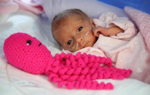 Las UCIN de varios hospitales del mundo han pedido voluntarios para que tejan estos simpáticos animalitos para sus bebés prematuros. Descubre aquí por qué.