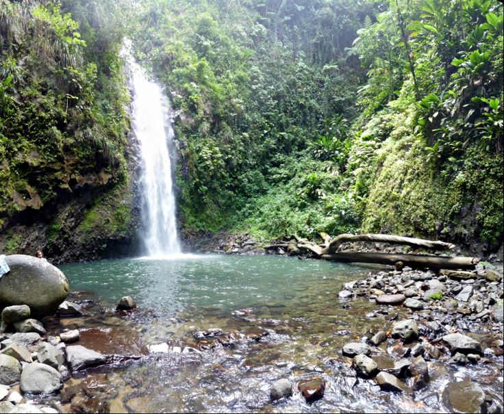 Le top 10 des rivières et cascades à découvrir en Martinique