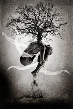 Surreal and abstract photo manipulation. Mother Nature connecting the tree of life to the earth.   60x90cm direct prin...