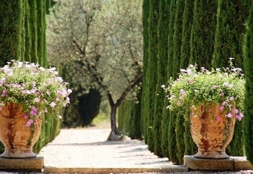 Plants Can, Gravel Paths, Gardens Paths, Cote De Texas, Formal Gardens, Trees, Planters, Landscapes, Beautiful Gardens