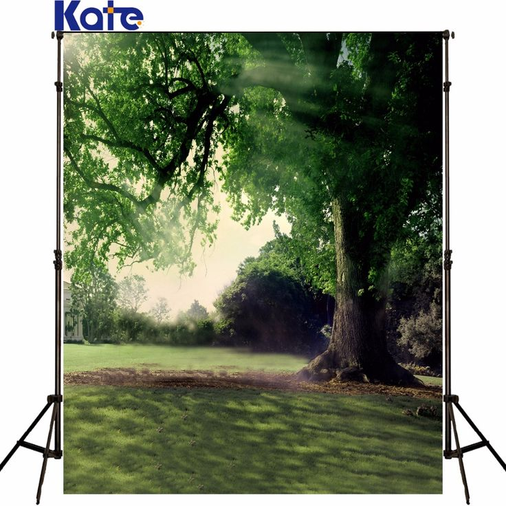 Find More Background Information about Green Lawn Tall Trees Muslin Backdrops For Photography Sunshine Building Backdrops Background For Photo,High Quality muslin backdrops for photography,China backdrops for photography Suppliers, Cheap muslin backdrop from katehome2014 on Aliexpress.com