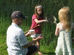 Fang søens dyr - også planche over søens dyr