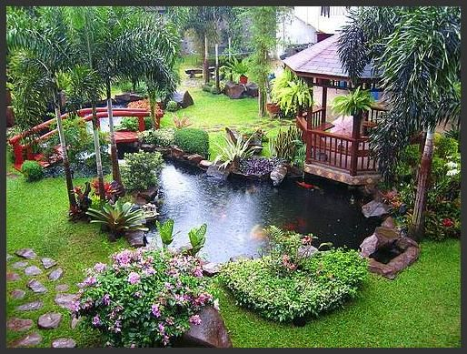 20 best images about Small tropical gardens on Pinterest