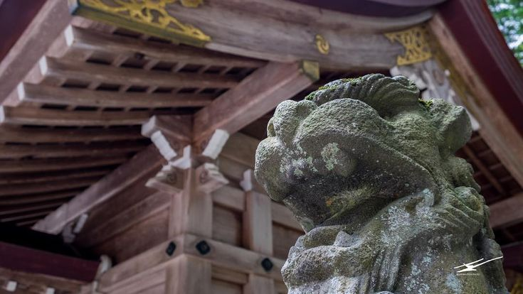 [ENG] Ward off the evil spirits komainu protector of the shrine. [CAT] Allunya els mals esperits komainu protector del temple.  #HypeinJapan #Yahikovillage #Yahikoshrine #弥彦 #Niigata #新潟県 #Japan #日本 #bcntb #iatiporelmundo #viatgersDC #inspirationcultmag #fatalframes #artistfound #japanawaits #tokyocameraclub #japanwireless #instagramjapan #team_jp_ #Japan_vacations #東京カメラ部 #japan_daytime_view #Lovers_Nippon #loves_nippon #icu_japan #photo_jpn #japantravel #explorejapan #pics_jp #ig_japan