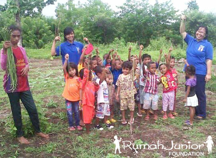 Rumah Junior Kegiatan belajar mengajar di sekolah ke-2 NTT Desa Taetnama  Belajar berkebun, bermain & mencintai alam