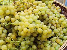 Según la tradición nacida en España, se cree que el que se coma las doce uvas al compás de las campanadas tendrá un año próspero.  Si le agregas champagne...será un año glamoroso!