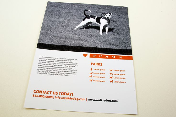Dog walking service flyer template mdcg sell sheets dog walking service flyer template mdcg sell sheets pinterest dog walking services flyer template and template pronofoot35fo Choice Image