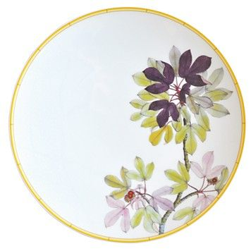 Adapted from botanical drawings of gardens in Mumbai, India, where an abundance of rare plant species grow, precisely detailed floral and vegetal illustrations adorn this fine porcelain plate from Ber