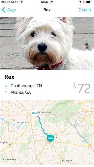 Roadie Pet Transport