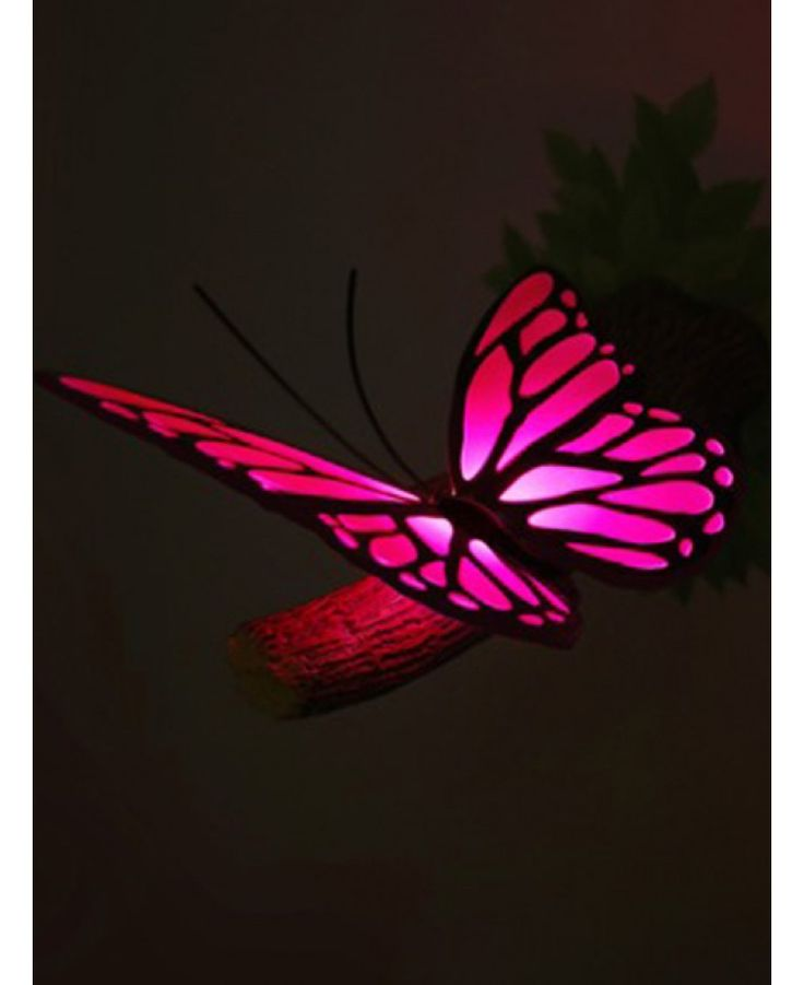 This 3D Butterfly Wall Light acts not only as a comforting nightlight but as an awesome feature in any child''s bedroom. The wall light comes with a green foliage sticker which the branch and butterfly is then mounted on top of to make it appear like the branch is growing out the wall.
