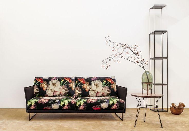 Nuovi Divani Twils Lounge FINN Idee per decorare la
