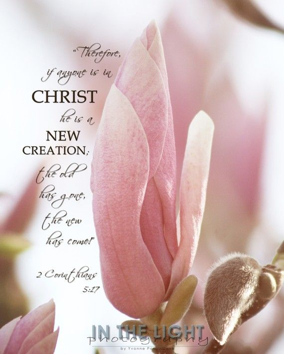 2 Corinthians 5:17 ~ Therefore if anyone is in Christ he is a new creation, the old has gone the new has come...